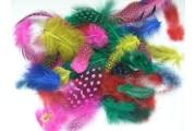 http://www.multemargele.ro/31307-jqzoom_default/set-pene-color-1gr-heyda.jpg