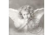 https://www.multemargele.ro/34085-jqzoom_default/servetel-vintage-33x33cm.jpg