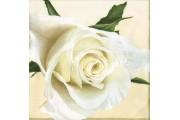 http://www.multemargele.ro/38840-jqzoom_default/servetel-decorativ-33x33cm.jpg