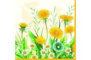 http://www.multemargele.ro/42593-jqzoom_default/servetele-33x33cm.jpg