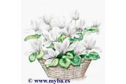 http://www.multemargele.ro/42607-jqzoom_default/servetele-33x33cm.jpg