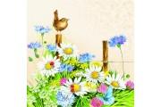 http://www.multemargele.ro/42619-jqzoom_default/servetele-33x33cm.jpg