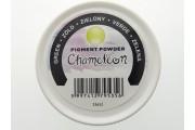 http://www.multemargele.ro/51865-jqzoom_default/3g-pigment-metalic-verde-pentart.jpg