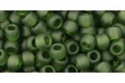http://www.multemargele.ro/52507-jqzoom_default/10gmargele-toho-60-culoare-transparent-frosted-olivine.jpg