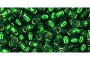 https://www.multemargele.ro/53323-jqzoom_default/10gmargele-toho-60-culoare-silver-lined-grass-green.jpg