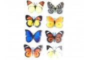 https://www.multemargele.ro/62580-jqzoom_default/set-8-stickere-fluturi-marime-fluture-40x35mm.jpg